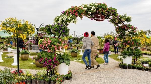 """CHOÁNG NGỢP """"kì hoa dị thảo"""" rực rỡ ở Hưng Yên: Đi ngay kẻo lỡ lễ hội hoa lớn nhất miền Bắc"""