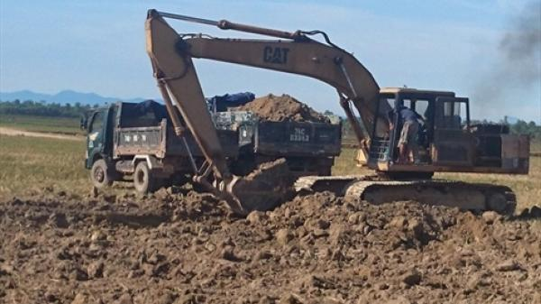 Sự thật việc đào đất lúa bán cho lò gạch ở Kim Động (Hưng Yên)
