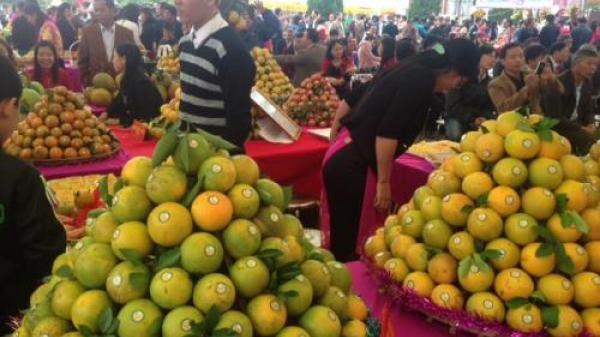 Hưng Yên lần đầu tiên tổ chức Hội chợ cam tại Ecopark vào 2 ngày