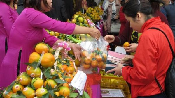 Hôm nay ngày 25/11, Hưng Yên sẽ diễn ra Hội chợ Cam lần đầu tiên tại Ecopark