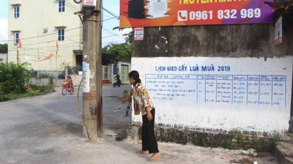 Đi chợ về, 2 người phụ nữ tỉnh Hải Dương phát hiện bé gái sơ sinh bị bỏ rơi