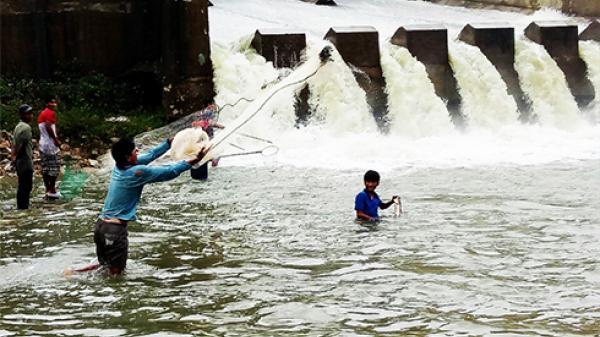Khánh Hòa: Hồ Suối Hành xả lũ, người dân liều bắt cá