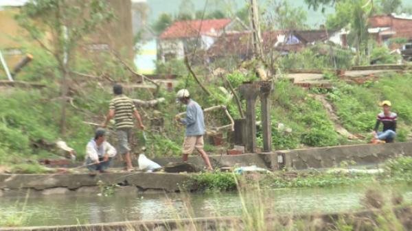Khánh Hòa: Hàng trăm người ngang nhiên câu trộm cá tại Viện nuôi trồng thủy sản
