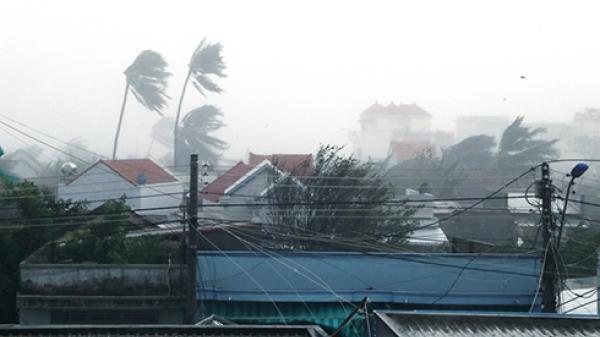 Từ 25 đến 27/12, toàn tỉnh Khánh Hòa có mưa lớn do ảnh hưởng của bão số 16