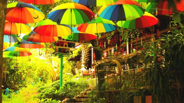 Ngỡ lạc bước vào chốn thần tiên khi ghé quán cà phê phủ ô rợp trời ngay ở Nha Trang