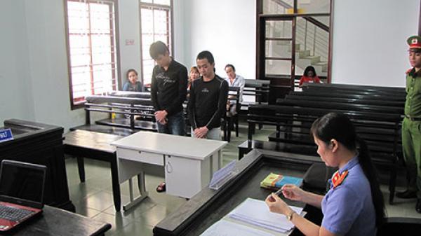 Khánh Hòa: Cùng nhau vào tù vì giật thỏi son và kính mắt