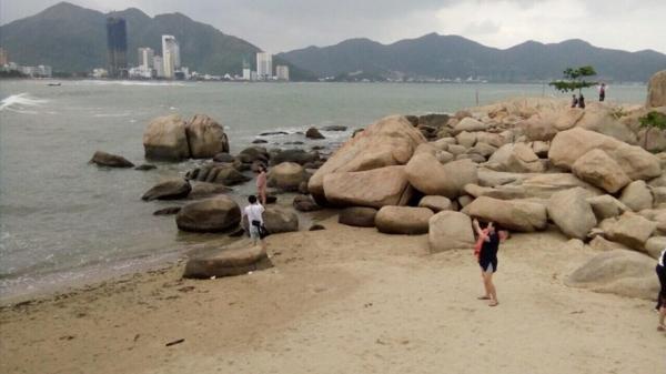 Nhiều rạn san hô gần bờ ở vịnh Nha Trang đã chết