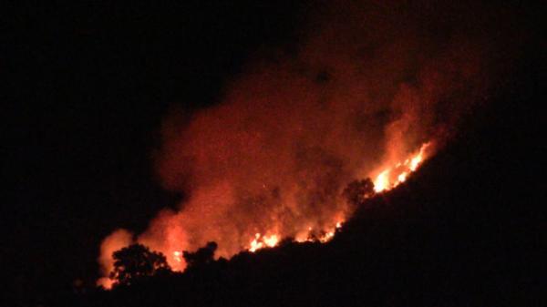 Đà Nẵng: Hàng trăm người dân và chiến sĩ hơn 6 giờ vật lộn dập lửa cứu rừng