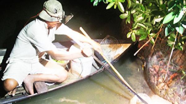 Khánh Hòa: Săn cua biển giống