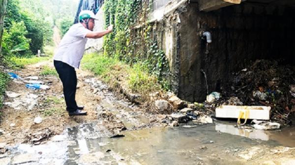 TP Nha Trang: Doanh nghiệp sơ chế thủy sản gây ô nhiễm