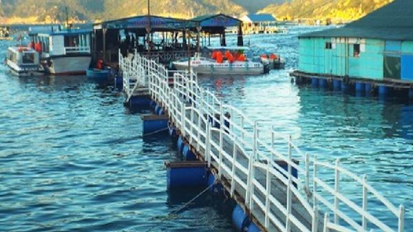 Khánh Hòa: Đình chỉ tất cả các bè nổi không đủ điều kiện kinh doanh du lịch