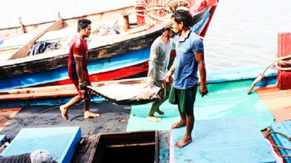 Khánh Hòa: Ngư dân vượt khó bám biển