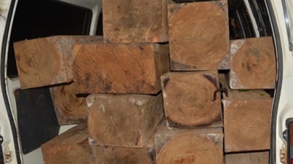 Đội Kiểm lâm cơ động tỉnh Khánh Hòa: Tạm giữ 1 ô tô vận chuyển gỗ lậu