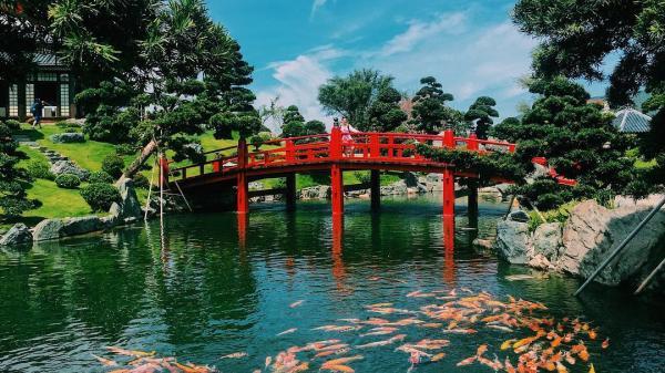 Khám phá công viên Đồi vạn hoa mới toanh mà du khách lẫn người bản xứ đều check-in ầm ầm ở Nha Trang