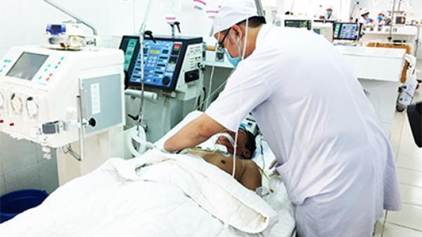 Khánh Hòa: Nhiều bệnh nhân gặp nguy kịch vì ong đốt, bác sĩ khuyên tuyệt đối không được xem thường