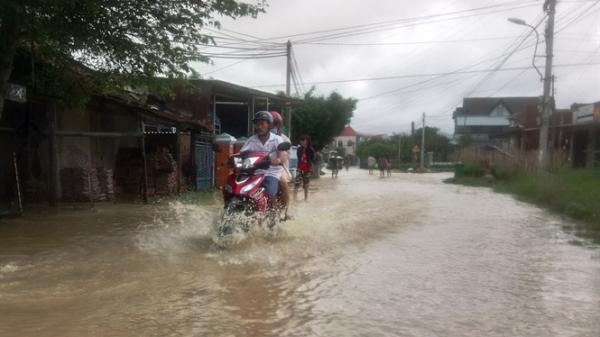 Khánh Hòa: Hàng trăm ngôi nhà, hàng nghìn ha lúa và hoa màu bị ngập do mưa lớn