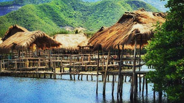 Hãy thử trải nghiệm hoàn toàn khác khi ghé thăm khu sinh thái Rừng Đước độc tôn ở Nha Trang