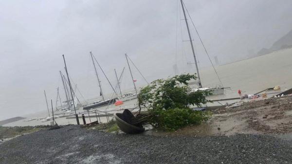Bão số 12 dìm 11 thuyền viên chìm xuống biển chưa tìm thấy