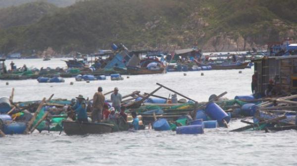 Khánh Hòa ghi nhận 42 người chết do bão số 12