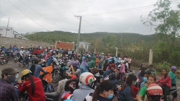Ninh Hòa: Gần 300 công nhân ngừng việc, đình công đòi giải quyết chế độ
