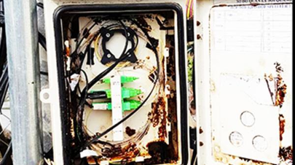 Khánh Hòa: Cảnh báo nạn cắt phá thiết bị viễn thông
