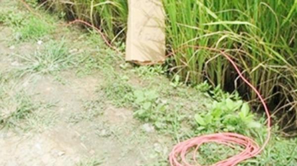 KINH HOÀNG: Thiếu niên 15 tuổi c.hết thảm vì dính bẫy điện diệt chuột ở Miền Tây