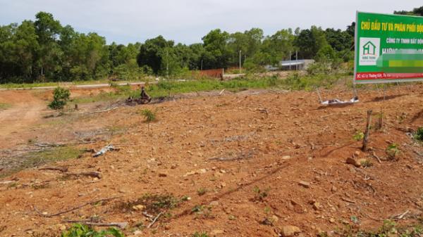 Kiên Giang: Hỗn loạn phân lô, chia đất