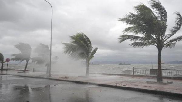 Năm nay còn 5-6 cơn bão và áp thấp nhiệt đới