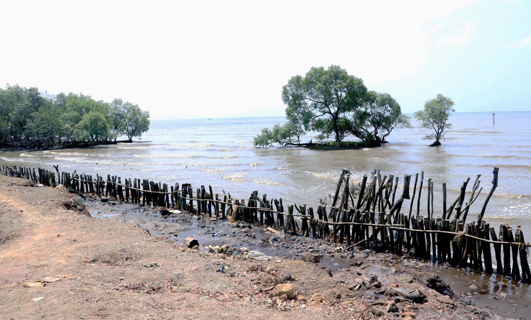 Kiên Giang: Sạt lở bủa vây bờ biển
