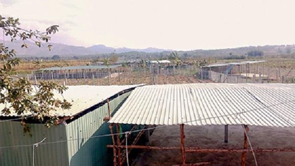 Thành phố Kon Tum: Dân ồ ạt dựng lều chờ...đền bù