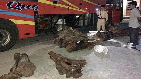 Phát hiện ôtô khách vận chuyển hơn 800 kg gỗ nghi gỗ trắc từ Kon Tum đi Quảng Nam