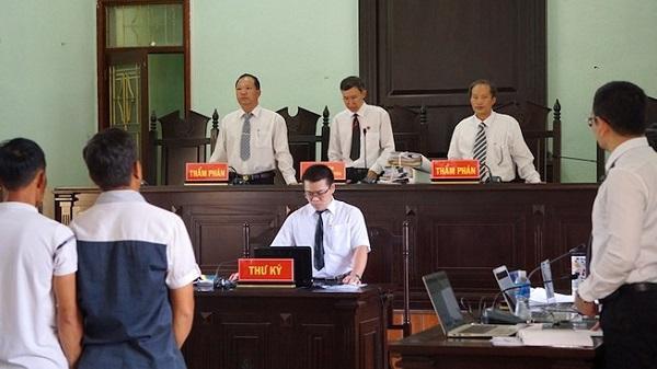Vụ cưa cây gỗ khô ở Kon Tum: Các thẩm phán đã hết bệnh