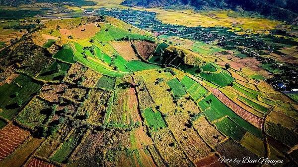 CHÙM ẢNH: Dã quỳ Tây Nguyên đẹp mê hồn dưới chân núi lửa Chư Đăng Ya - Thiên đường sống ảo là đây chứ đâu?