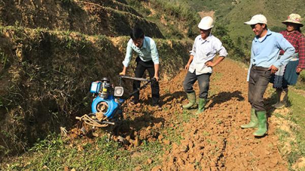 Huyện Tam Đường chuẩn bị gieo cấy vụ mùa
