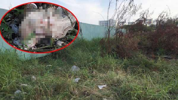 Kinh hoàng phát hiện xác người chết khô dưới lớp cỏ trong bãi đất trống