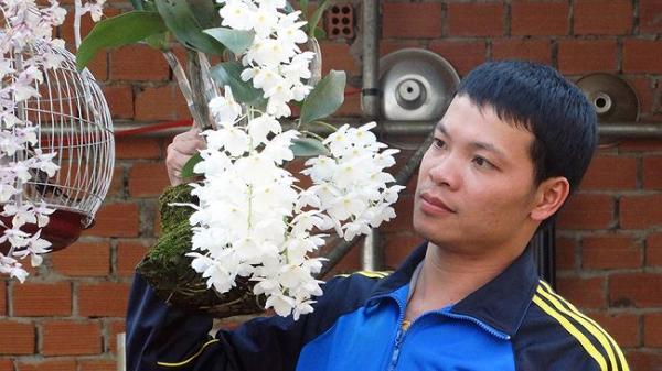 Chàng trai Lâm Đồng bỏ ngân hàng về trồng lan rừng thu... BẠC TỶ