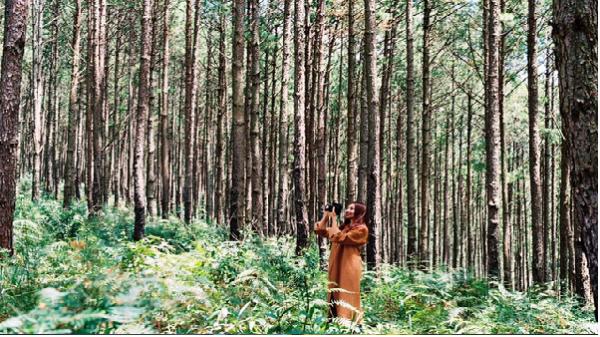 Những MV nhạc Việt khiến bạn muốn xách balo đến ngay Đà Lạt để yêu