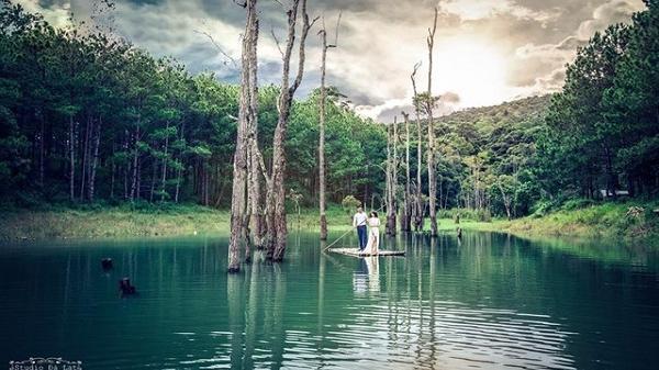 """Secret Garden - Thiên đường sống ảo đẹp """"lịm tim"""" tại Đà Lạt, cứ đi là có ảnh """"deep"""""""