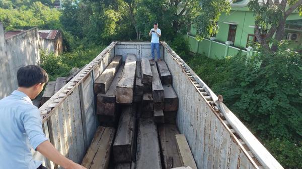 Tây Nguyên: Bắt giữ xe container chở gần 50m3 gỗ lậu, đề nghị khởi tố vụ án