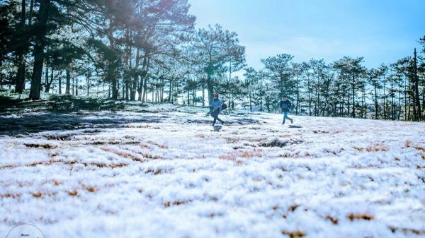 """Có một vùng đất của """"giấc mơ tuyết trắng"""" ngay tại Đà Lạt mơ mộng"""