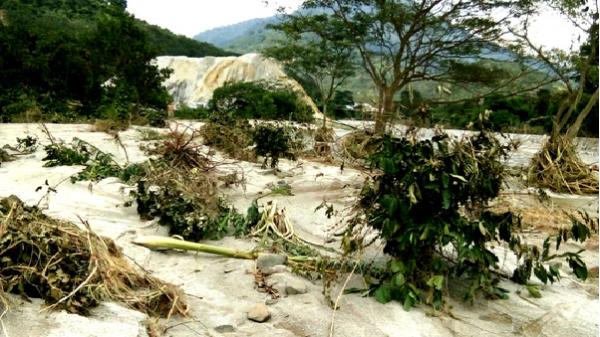 Lâm Đồng: Lũ quét bất ngờ, hàng chục hecta vườn cây bị hư hại