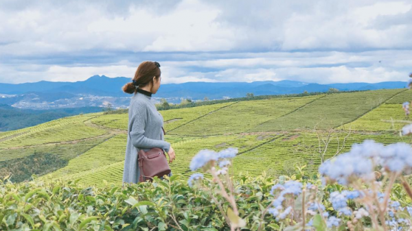 """Bật mí 3 nông trại xanh mướt, đẹp mê ly khiến giới trẻ  check in """"rầm rộ"""" ở Đà Lạt"""