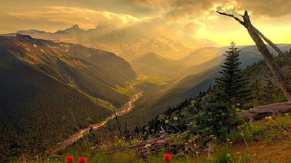 Đà Lạt: Những con đèo níu chân du khách bởi nhiều sắc hoa
