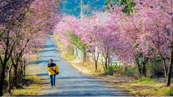 """Du khách đến Lâm Đồng phải có """"trang phục phù hợp"""""""