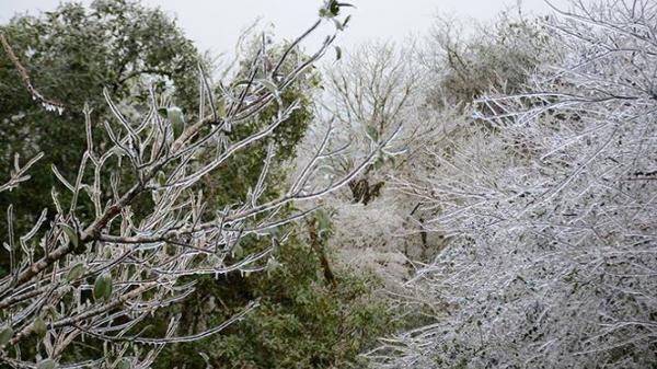 Tại sao các tỉnh Miền Bắc lại rét đậm rét hại nhất mùa đông năm nay?