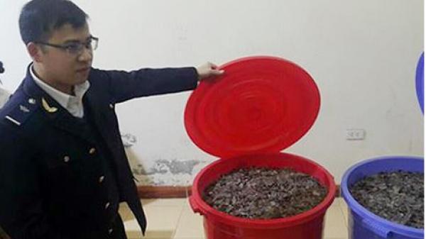 Lạng Sơn: Bắt giữ 100kg vẩy têtê giấu trong va-li