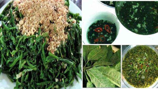 Thưởng thức nộm rau dớn và canh lá đắng - món ăn độc đáo của người Tây Bắc