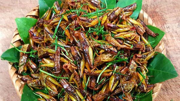 Tôm bay - món ăn đặc sản chỉ có ở bản Tày