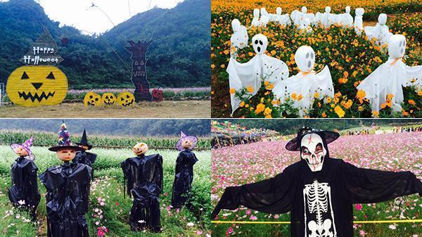 Tuổi còn trẻ, xăng lại rẻ, chần chừ gì mà không đến Lạng Sơn đón Halloween rùng rợn nhất ở thung lũng ngàn hoa