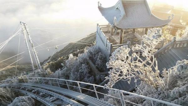 Cận cảnh băng tuyết phủ trắng đỉnh Fansipan trong nắng sớm